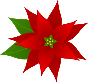 christmas_poinsettia